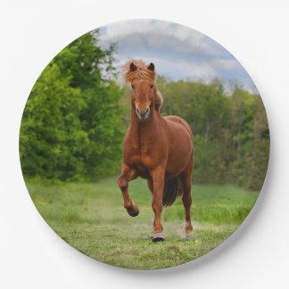 Prato De Papel Os amantes engraçados do cavalo da foto de Tölt do