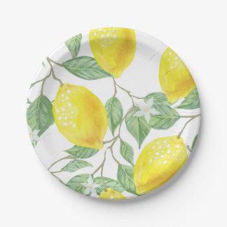 Prato De Papel Os limões imprimem as placas de papel no amarelo e