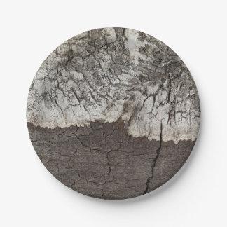 Prato De Papel País de madeira rústico do latido de vidoeiro