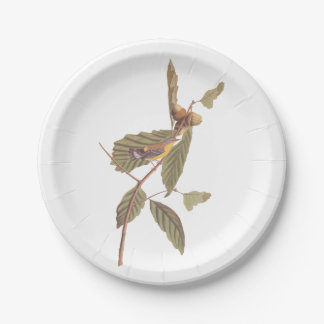 Prato De Papel Pássaro da toutinegra da magnólia de Audubon do