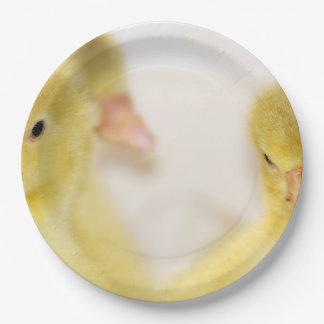 Prato De Papel Patinhos amarelos macios