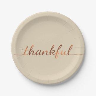 Prato De Papel placa de papel da acção de graças grata do