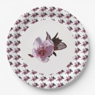 Prato De Papel Placa de papel - flor de cerejeira