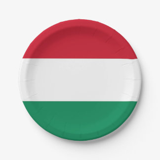 Prato De Papel Placa de papel patriótica com a bandeira de