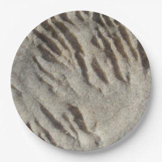 Prato De Papel Placas de papel de pedra resistidas