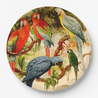 Prato De Papel Placas de papel dos animais selvagens dos animais