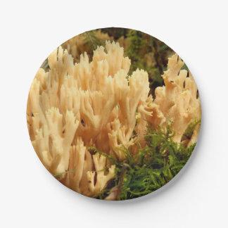 Prato De Papel Placas de papel dos fungos do stricta de Ramaria