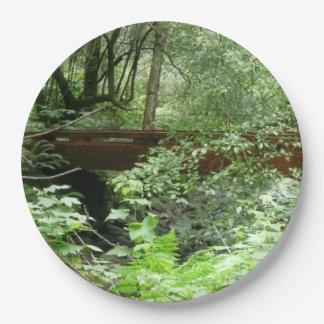 Prato De Papel Ponte das madeiras de Muir mim