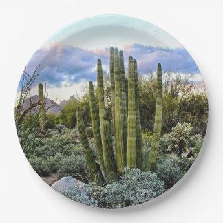 Prato De Papel Por do sol do Succulent de Scottsdale