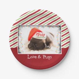 Prato De Papel Pug bonito do filhote de cachorro em um Natal