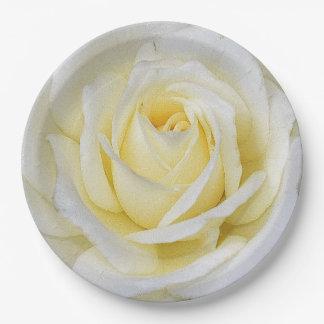 Prato De Papel Rosa branco e amarelo