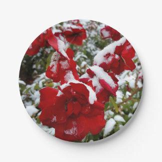 Prato De Papel Rosas vermelhas cobertas pela neve e pelo rime