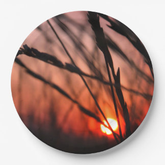 Prato De Papel Sun nas placas de papel feitas sob encomenda 9 da