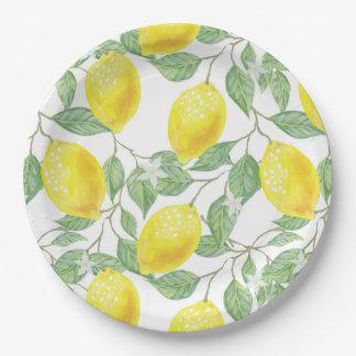 Prato De Papel Teste padrão da árvore de limão