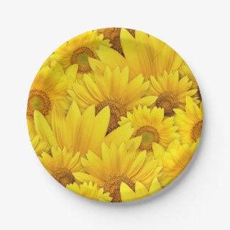 Prato De Papel Teste padrão floral da margarida amarela brilhante