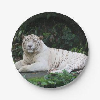 Prato De Papel Tigre de Bengal preto e branco relaxado e sorriso