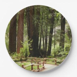 Prato De Papel Trajeto das madeiras de Muir mim