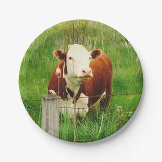 Prato De Papel Vaca curiosa bonito 4Lilly