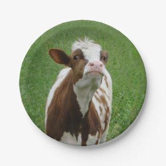 Prato De Papel Vaca de leite da leiteria na fazenda