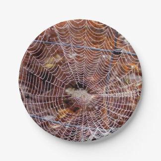 Prato De Papel Web da placa de papel européia de aranha de jardim
