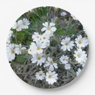Prato De Papel Wildflowers brancos