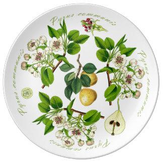 Prato De Porcelana Bandeja da pera (você pode personalizar)
