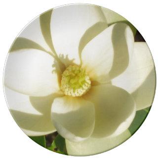 Prato De Porcelana Branco Wedding da placa de coletores da flor da