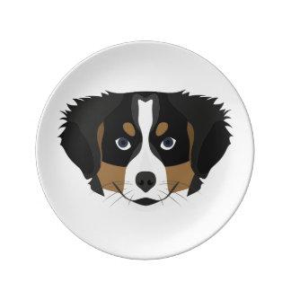 Prato De Porcelana Cão de montanha de Bernese da ilustração