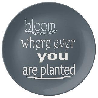 Prato De Porcelana Flor onde você é plantado nunca