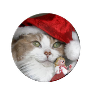 Prato De Porcelana Gato do papai noel - gato do Natal - gatinhos