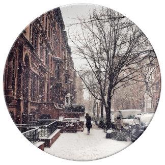 Prato De Porcelana Inverno no lado oeste superior