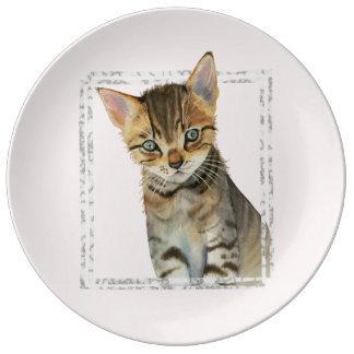 Prato De Porcelana Pintura do gatinho do gato malhado com quadro de