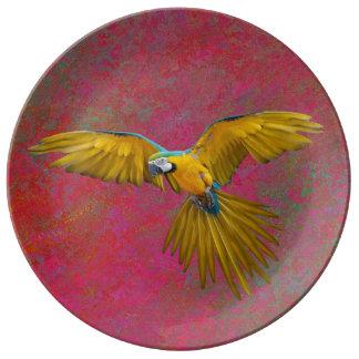 Prato De Porcelana Placa amarela do papagaio em vôo