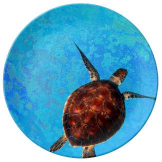 Prato De Porcelana Placa da tartaruga de mar
