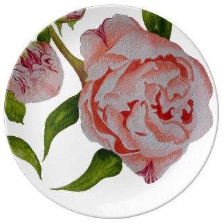 Prato De Porcelana Placa decorativa de brotamento da porcelana das