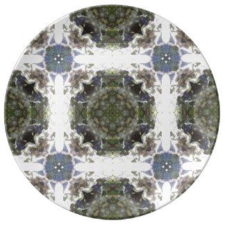 Prato De Porcelana Placa Lithia da porcelana da luz do rio do parque