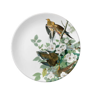 Prato De Porcelana Pomba da tartaruga de Carolina, pássaros de