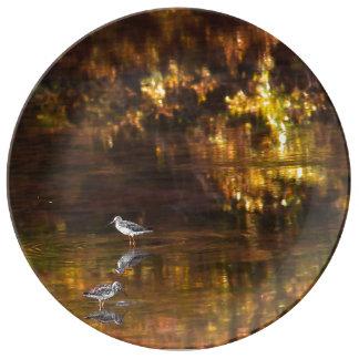 Prato De Porcelana Reflexões na última luz