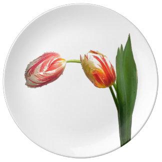 Prato De Porcelana Tulipa listrada vermelha & branca no branco
