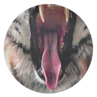 Prato Dentes do rolamento do tigre