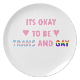 Prato É aprovado ser o transporte e o gay (v1)