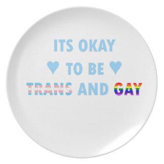 Prato É aprovado ser o transporte e o gay (v2)