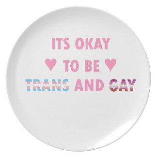 Prato É aprovado ser o transporte e o gay (v4)