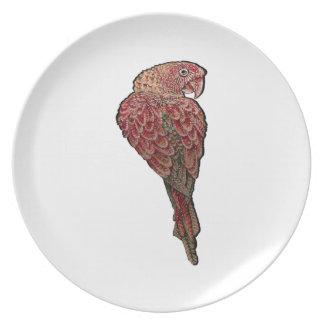 Prato Escarlate vermelho