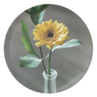 Prato flor
