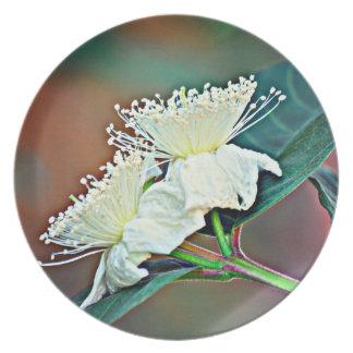 Prato Flor do abacate da placa da melamina @