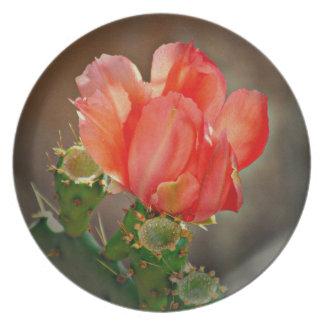 Prato Flor do cacto na placa vermelha da melamina