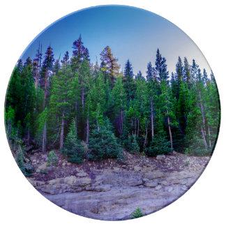 Prato Floresta & céu do vale de Yosemite