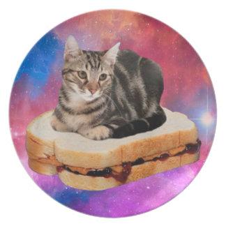 Prato gato do pão - gato do espaço - gatos no espaço