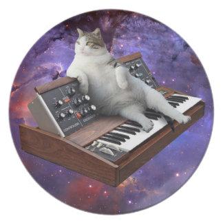 Prato gato do teclado - memes do gato - gato louco